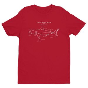 Great white shark illustration t-shirt for men